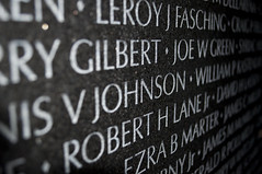 Vietnam Memorial (Northwest Rectangle, District of Columbia, United States) Photo