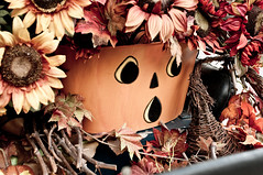 (hojoanaheim) Tags: california autumn fall halloween pumpkin disneyland harvest halloweentime anaheimresort disneylandparks