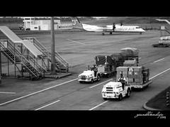 Hard work (gianellbendijo) Tags: people blackandwhite bw airport philippines cargo davao teampilipinas gianellbendijo