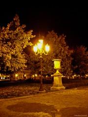 Padova: Prato della Valle (Babj) Tags: sculpture water lamp statue garden canal streetlamp lawn acqua statua prato channel canale giardino lampione padova pratodellavalle scultura veneto