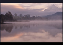 Magic at Sunrise (our cultural archive) Tags: mist lake mountains nature water sunrise reflections germany landscape deutschland bavaria dawn see ducks reflexions cate copenhaver flickraward flickrdiamond oarsquare mirrorser lakeweissensee saariyqualtiypics