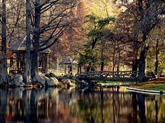 A place called heaven (me_ady_blackcat) Tags: park bridge november autumn trees water colors reflections pod heaven autumncolors romania toamna apa 2009 rai noiembrie craiova warmcolors copaci culori seson reflectii anotimp foisor