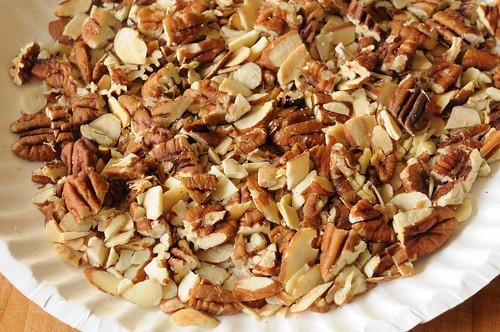 2009 12 05_chopped pecans and almonds.jpg