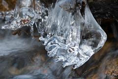 Season Greetings from a Icecold Sweden (atranswe) Tags: nature stream sweden sverige icicles halland falkenberg bäck lenssigma70300 dsc0431 istappar nikond80 atranswe 56°53′0″n12°30′e 20091219