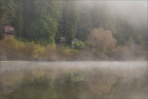 Morning mist on the Russian River