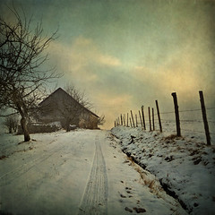 Happy 2010, dear friends! (pixel_unikat) Tags: winter sky snow cold tree barn fence way austria bravo track ditch textured muehlviertel 500x500 impressedbeauty infinestyle travelsofhomerodyssey magicunicornverybest magicunicornmasterpiece