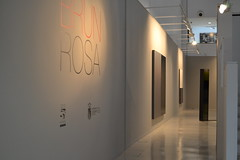 ROSA BRUN (124)