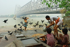 the bridge | Kolkata (arnabchat) Tags: bridge people india men water birds kids river fly flying pigeon splash acqua kolkata bengal calcutta bangla westbengal howrahbridge hooghly ghaat canon400d arnabchat arnabchatterjee
