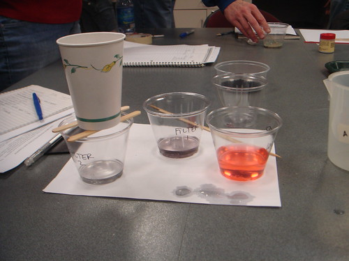 Teacher Institute, Water supports life