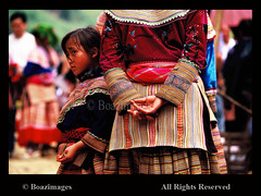 VIETNAM (BoazImages) Tags: world travel flower asian outdoors colorful asia southeastasia dress traditional hill culture documentary vietnam tradition tribe miao ethnic minority hmong locations destinations boazimages