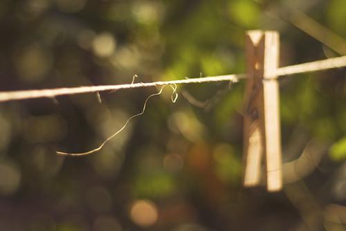 clothesline twine by jasfitz.