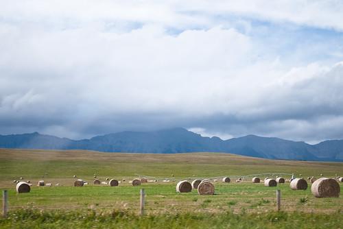 Livingstone Range, 249/365