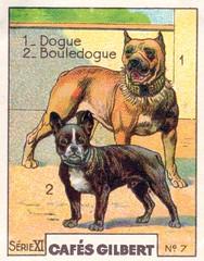 gilbert chiens010