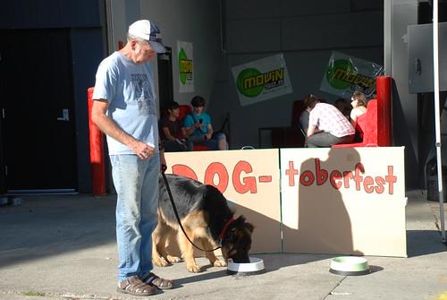 Dog-toberfest pit stop