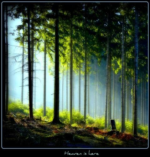 Ründeroth - Heaven is here