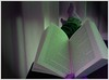 Relax. (Yavanna Warman {off}) Tags: pie relax reading book leer libro read pies terraza piernas leyendo dragonlance morado libroabierto
