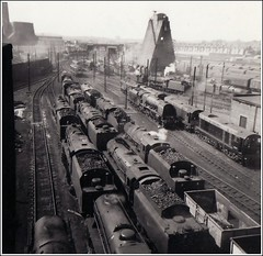 Willesden Shed 1962. (Stuart Axe) Tags: uk greatbritain england london train shed rail railway loco trains steam gb locomotive preserved railways britishrail steamengine steamtrain ger type1 gwr willesden lms britishrailways lner drs class20