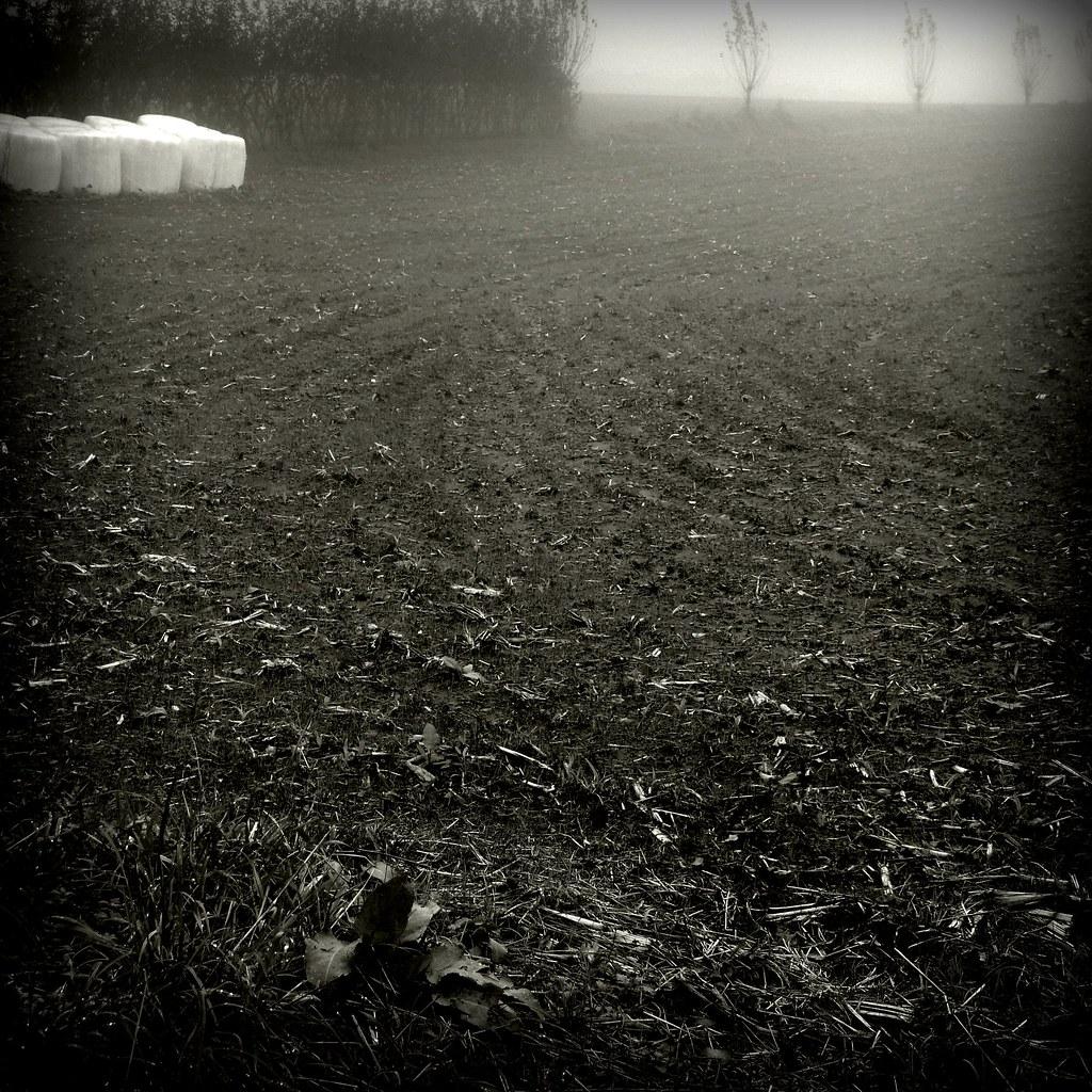 Winter #P1220765