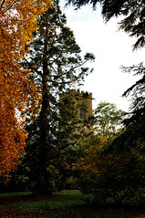 All Along the Watchtower... (Chris H#) Tags: autumn trees red brown green tower grass northampton rusty crisp jimihendrix s3000 abingtonpark allalongthewatchtower nikond5000 inthecrowdedwood