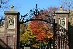Harvard Gates, Fall #2