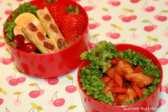 Ants on a Log Bento (Bunches and Bits {Karina}) Tags: orange chicken tangerine strawberry raisins grapes bento carrots peanutbutter celery