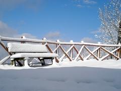"sono sola.. sedetevi pure ("" paolo ammannati "") Tags: neve toscana casentino fotoconneve"