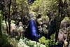 Erskine Falls, Victoria landscape (Heaven`s Gate (John)) Tags: trees green nature water landscape waterfall australia victoria falls otways lorne erskineriver erskinefalls 10faves johndalkin heavensgatejohn