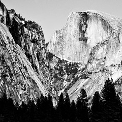 Dangerous Liason (Thomas Hawk) Tags: bw 10 yosemite fav10 natureshand