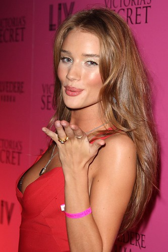 Candidate Transformers 3 Rosie Huntington-Whiteley
