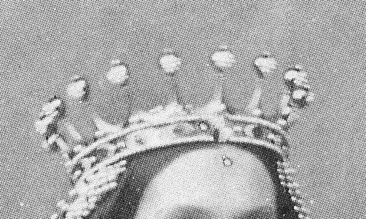 Corona de Isabel II obra del diamantista José Navarro