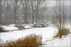 it's snowing (heavenuphere) Tags: bridge trees winter snow netherlands landscape snowflakes europe nederland snowing zuidholland poortugaal southholland 1750mm albrandswaard
