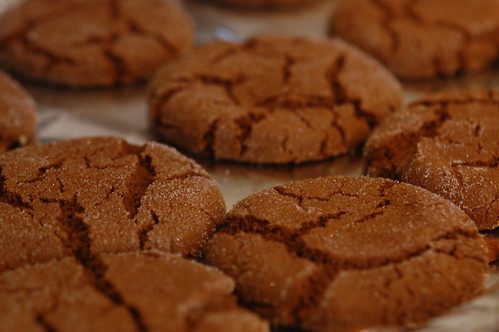 completed ginger snaps