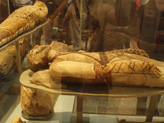 British Museum Egypt Mummies (pedro_tornero) Tags: london museum cat egypt londres british museo egipto mummies momias nebamun gayeranderson birtnico