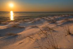 dune waves-6255 (P.E.T. shots) Tags: