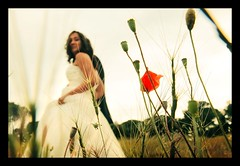 MARIAGE / WEDDING : The Poppy! :o) (Sebastien LABAN) Tags: wedding red party white flower cute love beautiful grass hair photography groom bride soft glow dress heart dream ceremony cheeks lovely weddingphotography