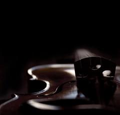 """violin..."" (helmet13) Tags: raw violin harmony lowkey magical studies 100faves d80 peaceaward heartaward thejurors world100f felixmendelssohn phvalue platinumpeaceaward showthebest"