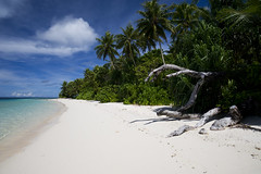 Tropical Beach, Eneko Island, Marshall Islands (camillaskye) Tags: ocean sea beach sand southpacific tropical atoll eneko marshallislands majuroatoll enekoisland