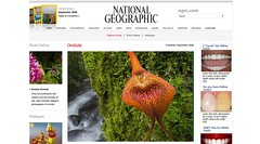 Orchids — National Geographic Magazine_1251421759344