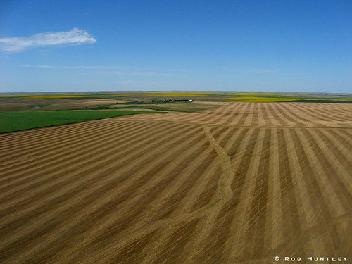 Harvested wheat field - Kite Aerial Photography (KAP)