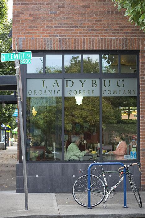 Ladybug Coffee Co