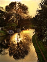 365-082 Sunset over Bridgewater Canal Grappenhall (Hotpix [LRPS] Hanx for 1.5M Views) Tags: uk bridge sunset england sun hot tree water set noche canal warrington pix village cheshire pics dusk smith tony nuit hdr highdynamicrange picks tdk bridgewater lunt a50 hotpix hotpics 365days tonysmith hotpick a56 grappenhall hotpic hotpicks grappenhallvillage tdktony stanney grappenhal hotpixuk hotpixfreeservecouk