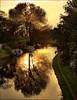 365-082 Sunset over Bridgewater Canal Grappenhall (@HotpixUK -Add Me On Ipernity 500px) Tags: uk bridge sunset england sun hot tree water set noche canal warrington pix village cheshire pics dusk smith tony nuit hdr highdynamicrange picks tdk bridgewater lunt a50 hotpix hotpics 365days tonysmith hotpick a56 grappenhall hotpic hotpicks grappenhallvillage tdktony stanney grappenhal hotpixuk hotpixfreeservecouk