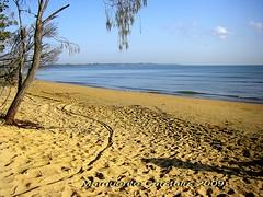 Beach Hervey Bay