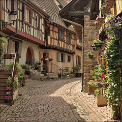 Typical alley in Eguisheim (Foto Martien (thanks for over 2.000.000 views)) Tags: street flowers plant france history alley frankreich strasse pflanzen blumen medieval alleyway alsace frankrijk passage picturesque planten bloemen ouddorp gasse straat fachwerk elsas historisch oldvillage steeg timberframing elzas fachwerkhuser vakwerk hautrhin halftimbering routedesvins straatje wineroute middeleeuws eguisheim a350 halftimberedhouses egsa maisoncolombages maisonpansdebois sonyalpha350 ruedurempart popeleoix nearcolmar egisheim martienuiterweerd carlzeisssony1680 elsssischenweinstrase pausleoix papstleoix alsaceswineroute alsatianwineroad martienarnhem areacolmar regioncolmar mygearandme mygearandmepremium mygearandmebronze mygearandmesilver mygearandmegold mygearandmeplatinum mygearandmediamond fotomartien