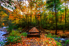 (Malcolm MacGregor) Tags: bridge fall leaves river tennessee fork doe falls trail hero winner appalachian hampton laurel thechallengefactory