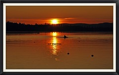 19 (GP_PHOTOS@) Tags: sunset zonsondergang tramonto sonnenuntergang puestadesol  coucherdesoleil rowers solnedgng    grainger zpadslunce remeros roeier  zachdsoca  ruderer  rameurs   veslai wiolarze