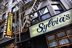 Sylvia's of Harlem (Ken Yuel Photography) Tags: harlem ribs soulfood sylvias thebigapple manhattanisland harlemny digitalagent kenyuel sylviasofharlem thebestribsintown