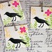 square crow tags