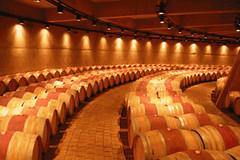 Mendoza…. una tierra regada por el sol y el vino
