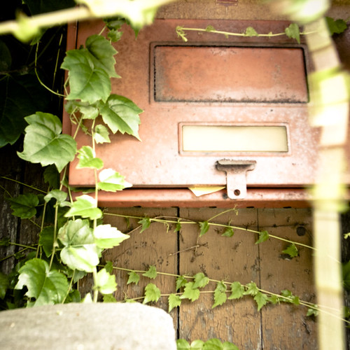 Post box of Ivy